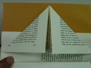 Fold the sides of the next page in to meet at the center.  Flatten creases.  Repeat steps until all pages of book are folded.